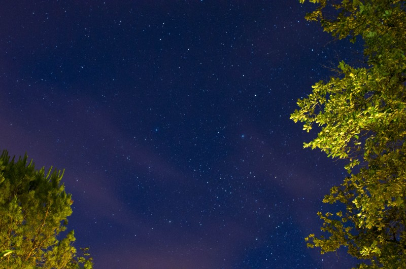 stars 1
