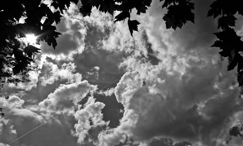 DSC00409 BW sky